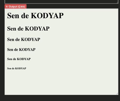 kodyap-yazilim-dersleri-h-basliketiketleri2016-12-4-77137